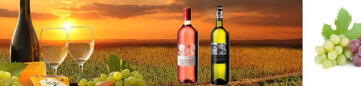 Nová vína od vinařství Vyskočil – právě naskladněno